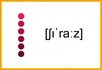 Shiraz / Syrah