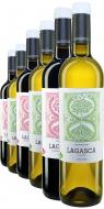 Weinpaket Dominio de Punctum Lagasca DUO BIO*