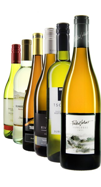 Weinpaket Sauvignon Blanc - aus aller Welt