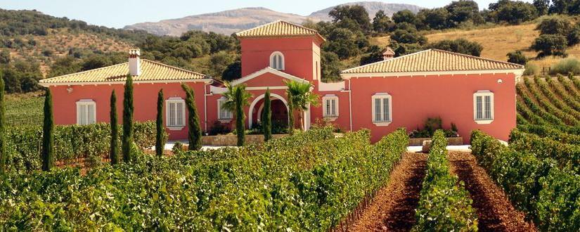 Spanische Weine: Was verbirgt sich hinter den einzelnen Qualitätsstufen?