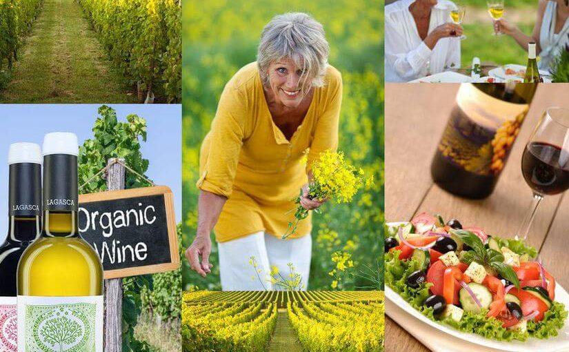 Biowein und Ökowein – Nachhaltiger und bewusster Genuss liegt auch bei Wein im Trend!